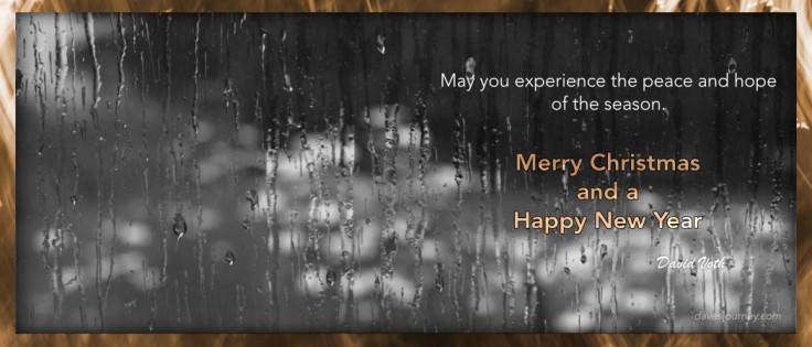 May you experience the peace and hope of the season. Merry Christmas and a Happy New Year