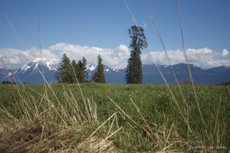 Photo of Chilliwack Fields and Mt. Cheam
